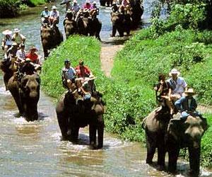 ekskursii-v-tailande